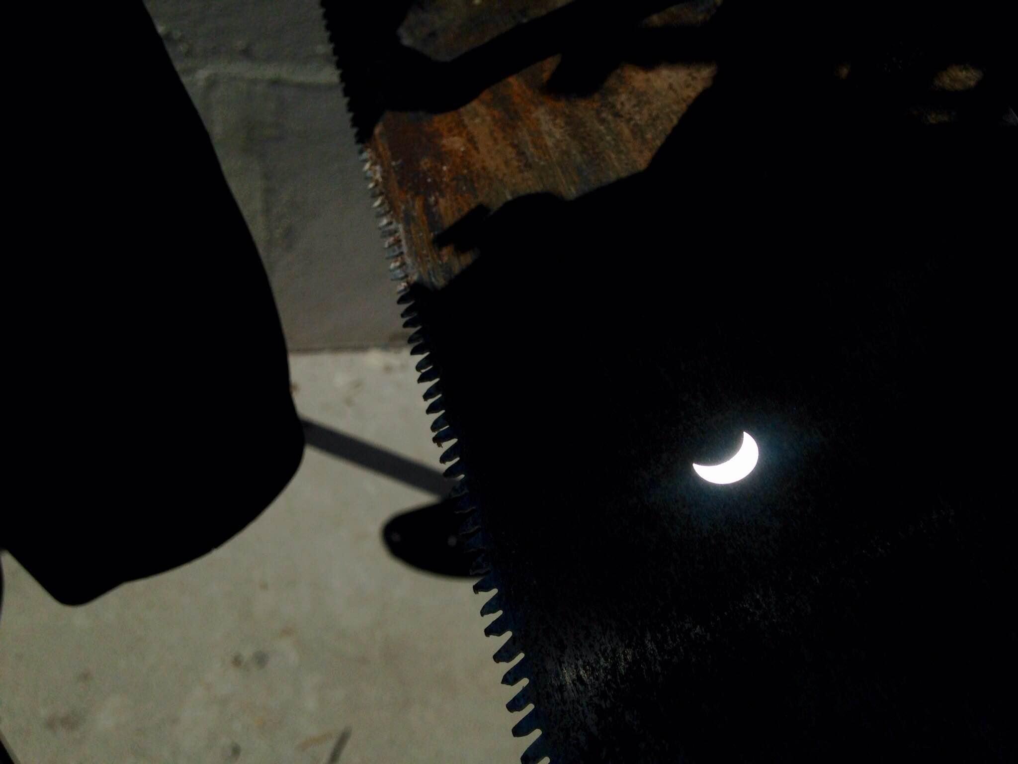 Close up del serrucho asoleado.