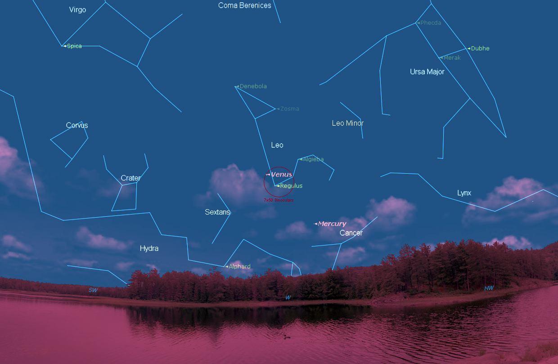 En tres campos de binocular tenemos a Venus, Regulo y Mercurio